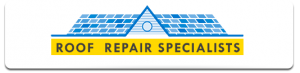 Roof Repair Specialist in Delaware